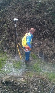 Glory job of brushing berries while standing in ditch to set a property corner.